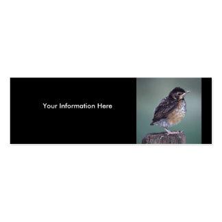 profile or business card, robin
