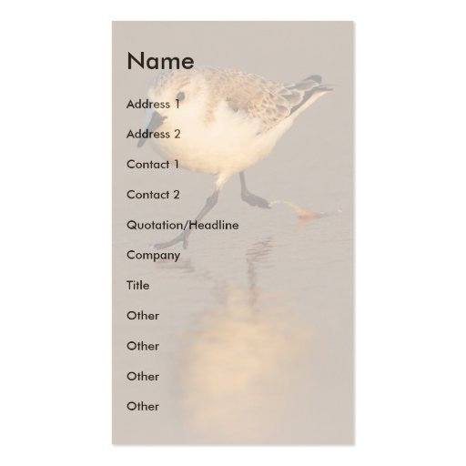 profile or business card, sand piper