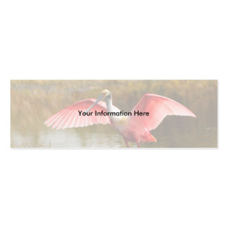 profile or business card, spoonbill