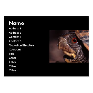 profile or business card, turtle