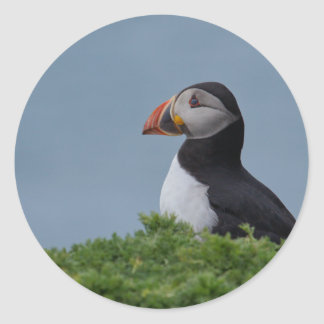 Profile Puffin Classic Round Sticker