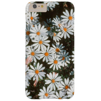 Profusion Of White Daises (Asteraceae) Barely There iPhone 6 Plus Case