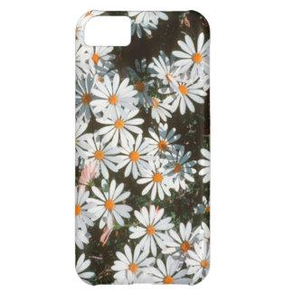 Profusion Of White Daises (Asteraceae) iPhone 5C Case
