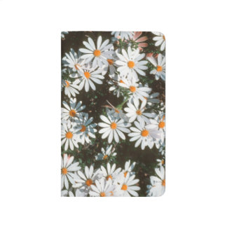 Profusion Of White Daises (Asteraceae) Journal
