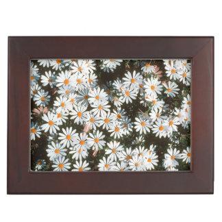 Profusion Of White Daises (Asteraceae) Keepsake Box