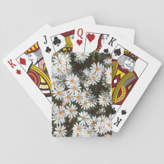 Profusion Of White Daises (Asteraceae) Playing Cards