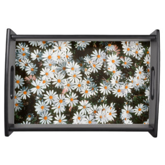 Profusion Of White Daises (Asteraceae) Serving Tray