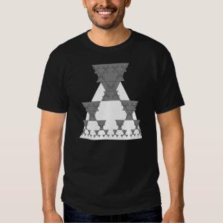 Programmer Algorithmic MathT-shirt Generator Tee Shirt