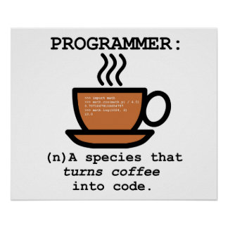 Programmer Definition Funny Poster