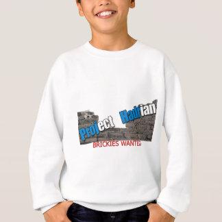 Project Hadrian Sweatshirt
