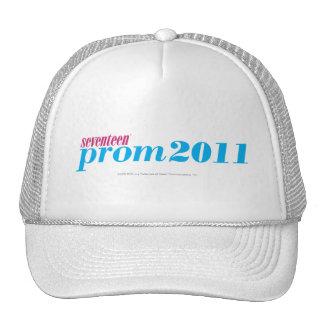 Prom 2011 - Aqua Mesh Hat