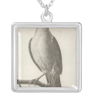 Promerops or Bee Eater of California Silver Plated Necklace
