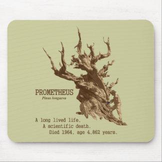 Prometheus: Scientifc Death of a Tree Mouse Pad