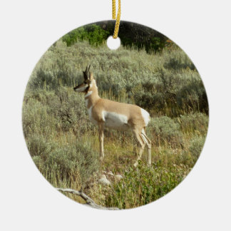 Pronghorn at Grand Teton National Park Round Ceramic Decoration