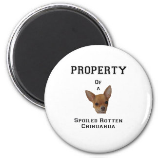 Property of a Spoiled Rotten Chihuahua Magnet