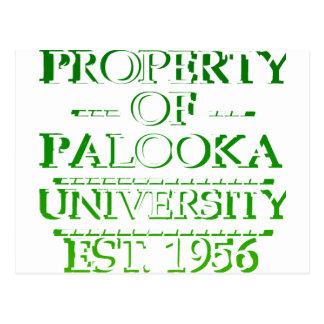 Property of Palooka University White w/ Green Postcard
