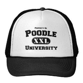 Property of Poodle University Hats