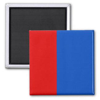 Proposed Pridnestrovie – Variant, Pridnestrovie Refrigerator Magnet