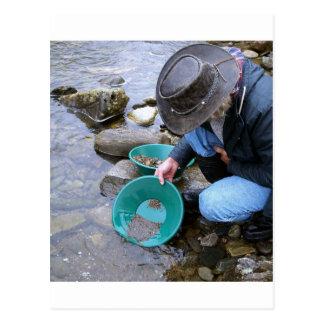 Prospectors Gold Panning Mug Postcard