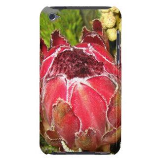 Protea Bouquet iPod Touch Case
