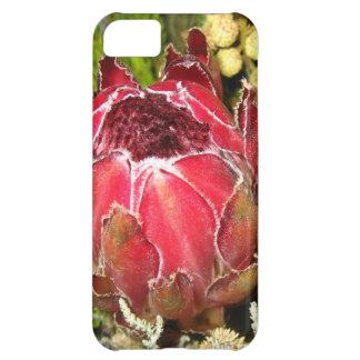 Protea Bouquet iPhone 5C Case