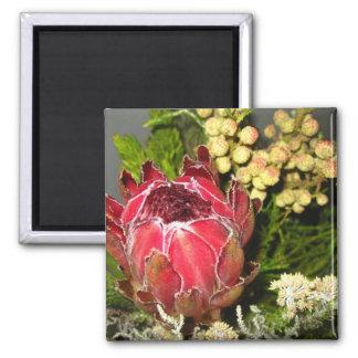 Protea Bouquet Square Magnet