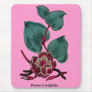 Protea Cordifolia Mouse Pad