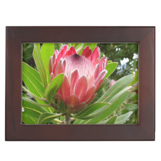 Protea Flowers Keepsake Box