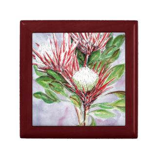Proteas Small Square Gift Box