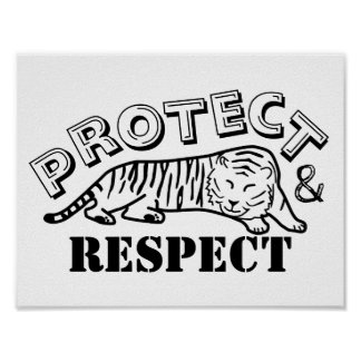 Protect and Respect Poster