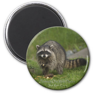 """PROTECT OUR WILD PLACES"" Raccoon Magnets"