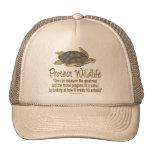 Protect Sea Turtles Cap