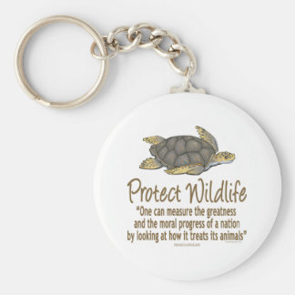 Protect Sea Turtles Key Chains