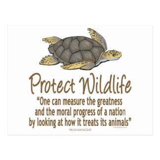 Protect Sea Turtles Postcard