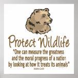 . Protect Wildlife, Ursus, Bears