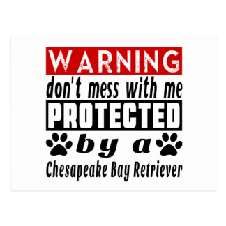 Protected By Chesapeake Bay Retriever Postcard