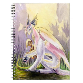 Protection Notebook