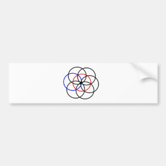 Protection symbol flower of the life and Vesica Pi Bumper Sticker