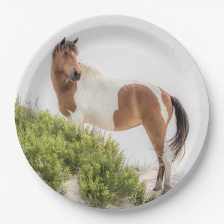 Protector of the Dunes Paper Plates
