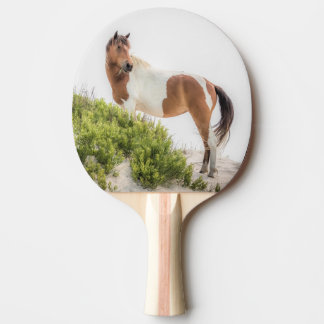 Protector of the Dunes Ping Pong Paddles
