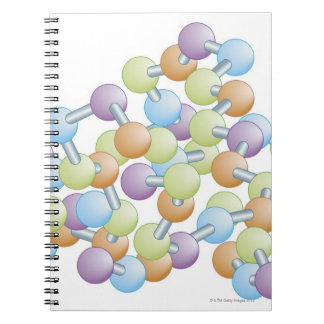 Protein Synthesis Notebook