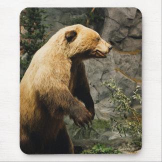 Proud Bear Mouse Pad
