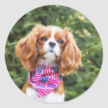 Proud Cavalier King Charles Spaniel Puppy Round Stickers