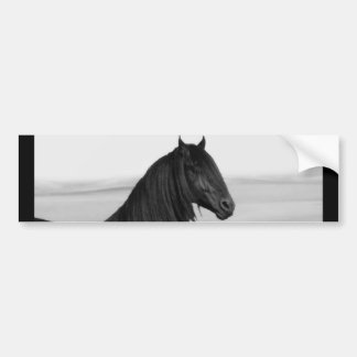 Proud Friesian black stallion horse Bumper Sticker