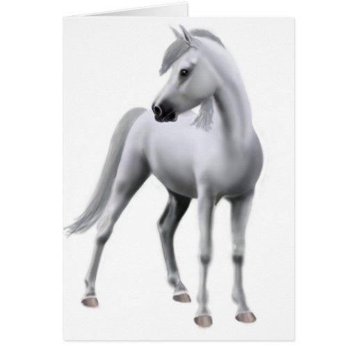 Proud Grey Horse Card