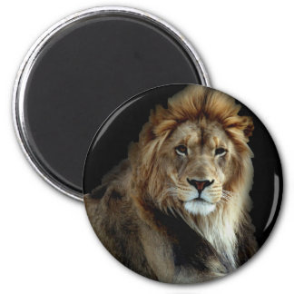 Proud King of the Animal Kingdom Magnet