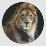 Proud King of the Animal Kingdom Round Sticker