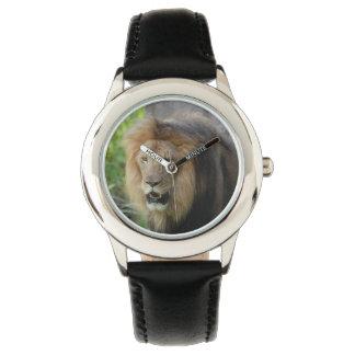 Proud Lion Watch