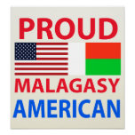 Proud Malagasy American