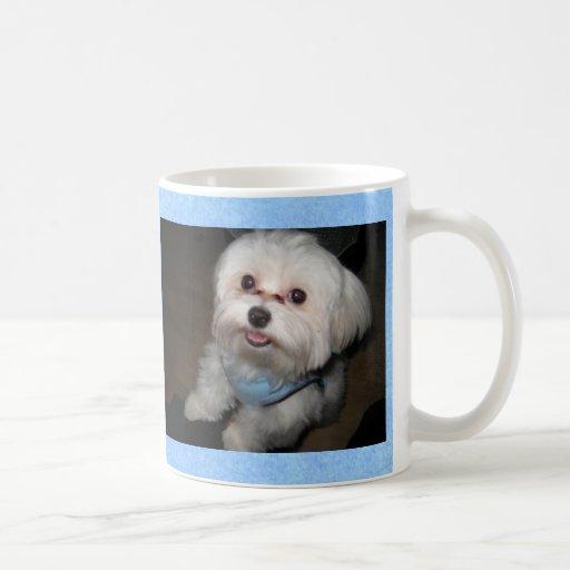 Proud Parent of a Spoiled Rotten Pet Mug-Boy